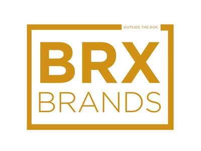 Criação de Loja Virtual do cliente Brx Brands Importação Ltda..
